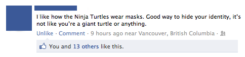 I like how the Ninja Turtles wear masks. Good way to hide your identity, it is not like you are a giant turtle or anything